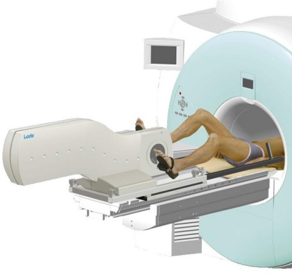 Lode MRI Ergometer Pedal